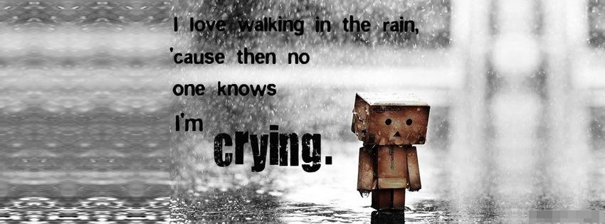 love_walking_in_the_rain_facebook_cover_1349171224