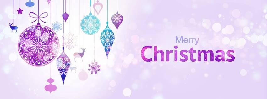 Winter Woolly Days - Facebook Christmas Cover Photo